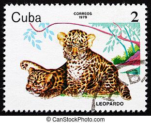 selo postal, cuba, 1979, leopardos, jardim zoológico, animais