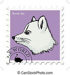 selo, raposa ártica