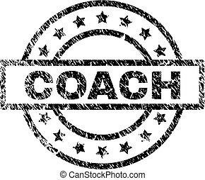 selo, treinador, grunge, textured, selo