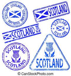 selos borracha, escócia