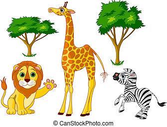 selvagem, 1, animais