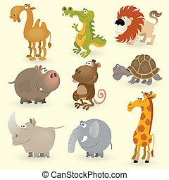selvagem, #1, jogo, animais