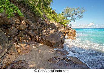 selvagem, anse, principal, praia, ilha mahe, seychelles