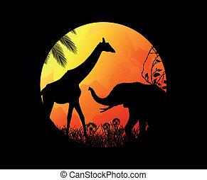 selvagem, elefantes, girafas