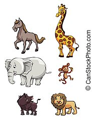 selvagem, Grupo,  animal