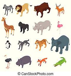 selvagem, isometric, animais, ilustração
