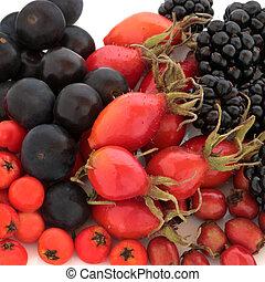 selvagem, outono, fruta