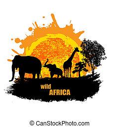 selvagem, pôr do sol, vetorial, áfrica, ilustração