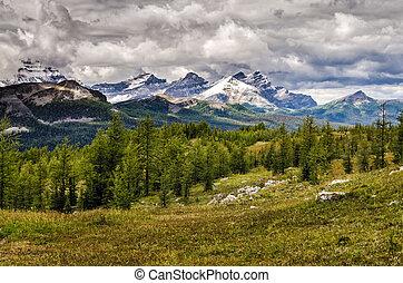 selvagem, paisagem, alcance montanha, vista, parque nacional banff, canadá