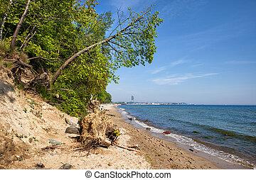 selvagem, praia, em, gdynia, em, mar báltico