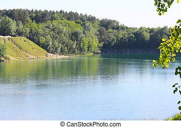 selvagem, praia, ligado, um, bonito, lago