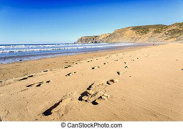 selvagem, praia, ocidental, portugal