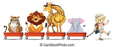 selvagem, vagão, animais, vermelho