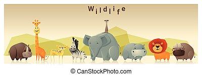 selvatico, 1, animale, fondo