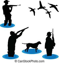 selvatico, cacciatori, anatre