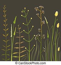 selvatico, campo, fiori, e, erba, su, nero