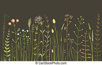 selvatico, campo, fiori, erba, nero