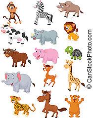 selvatico, cartone animato, animale, collezione
