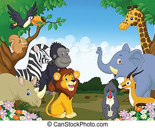 selvatico, cartone animato, animale