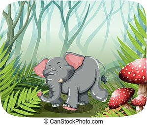 selvatico, correndo, elefante
