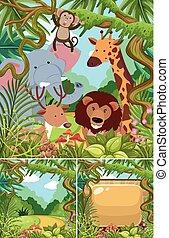 selvatico, giungla, animali, scene, natura