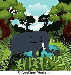 selvatico, giungla, scena, elefante