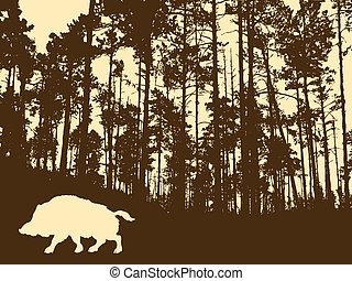 selvatico, legno, verro, spesso, silhouette