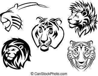 selvatico, leoni, tigri, pantere