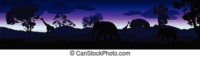 selvatico, savana, animali, paesaggio, africano, silhouette
