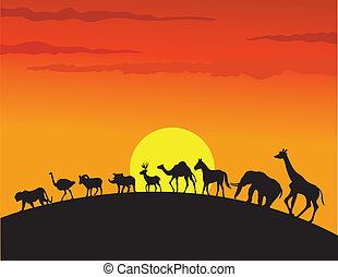 selvatico, silhouette, animale