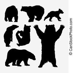 selvatico, silhouette, orso, animale