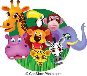 selvatico, vettore, cartone animato, animale