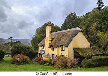 selworthy, cottage, tetto thatched, pittoresco