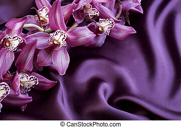 selyem, és, orchid., noha, copyspace