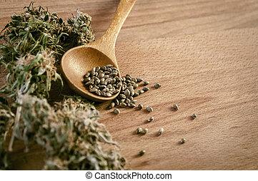 sementes, cannabis, dinheiro
