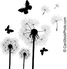 sementes, dandelion, vento soprado