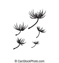 sementes, dandelion, vetorial, vento soprado