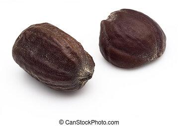 semi, chinensis), jojoba, (simmondsia