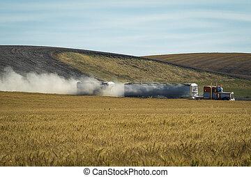 Semi trailer truck hauling grain through wheat fields