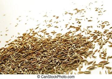semillas, comino