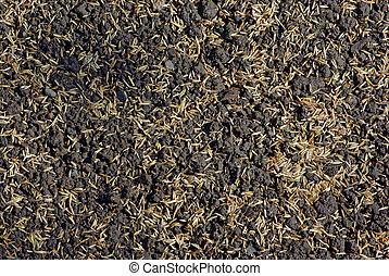 semillas, de, césped césped, en, el, tierra