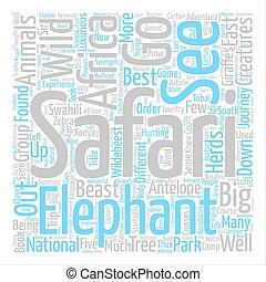 Semper Fidelis text background word cloud concept