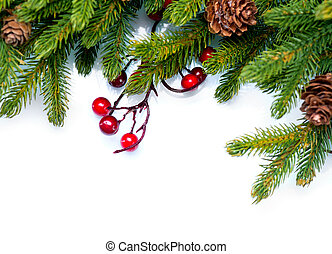 sempre-viva, árvore abeto, desenho, natal., borda