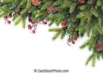 sempreverde, albero abete, disegno, natale., bordo