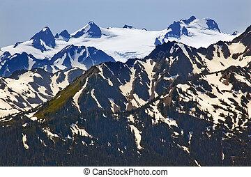 sempreverde, montagne, olimpico, cresta, parco, nazionale, washington, neve, pacifico, stato, closeup, nord-ovest, hurricaine