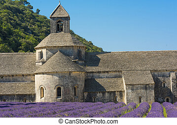 Senanque Abbey - Cistercian Abbey of Senanque and blooming ...