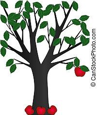 senast, äpple