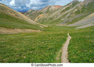 sendero de excursión, en, el, montañas rocosas