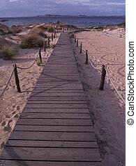 sendero de madera