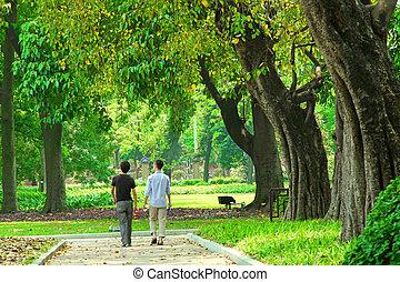 sendero, en, un, jardín, de, guangzhou, china